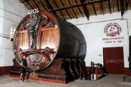 Mendoza - Bodega GIOL 3