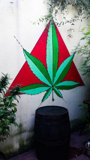 Montevideo - Musée du Cannabis