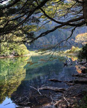 Pucon - Parc Huerquehue Lac