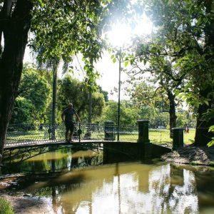 Bosques Palermo 5
